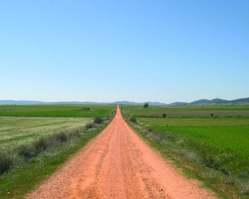 Muchos caminos. Imágenes contemporáneas del Camino de